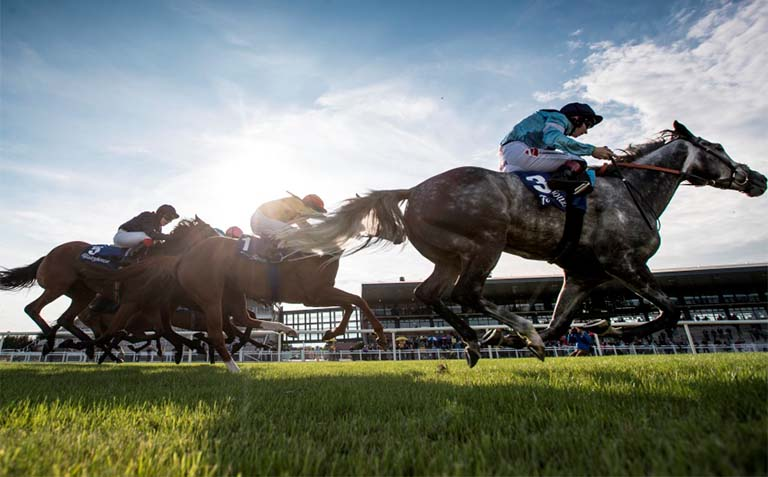Latest News: Owners to return to Irish racecourses from Monday